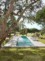 Sun-loungers are placed in a row beside a lap pool set in a garden planted with oaks and pines.