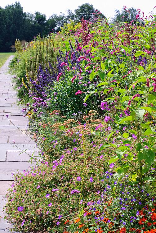 White Flower Farm | Plant & Flower Stock Photography: GardenPhotos.com