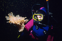 Scuba Diver and Giant Nudibranch (dendronotis iris) underwater in British Columbia, Canada.