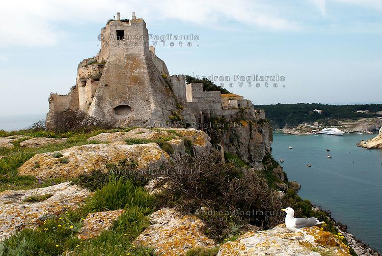 Italia, Isole Tremiti.<br /> Isola di San Nicola, Il torrione del Cavaliere del Crocifisso.<br /> Italy, Tremiti islands.<br /> San Nicola island, the tower of the Knight.
