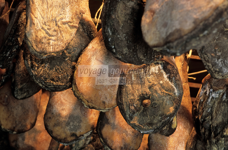 Europe/France/Corse/2A/Corse-du-Sud/Cuttoli-Corticchiato: les jambons corses de Mr Pierlovisi éleveur de cochons corses et producteur de charcuterie corse dans le sechoir