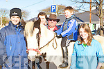 Jason Rogers, Raymond Sugrue, Ross Sugrue, Aisling Sugrue Ardfert at the Killorglin Horse Fair on Saturday