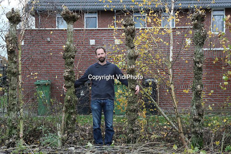 Foto: VidiPhoto<br /> <br /> SOMEREN - Boombeheerder Joep Veldkamp uit Someren bij zijn windscherm van geknotte populieren.