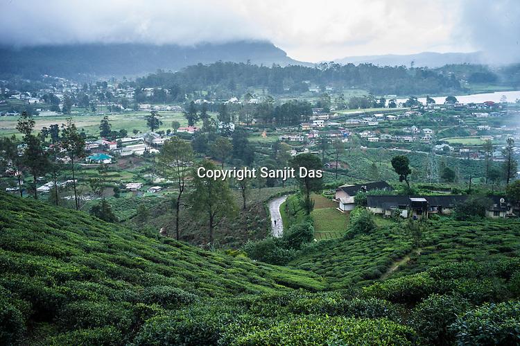 An overview of Pedro Tea Estate in Nuwareliya in Central Sri Lanka.  Photo: Sanjit Das/Panos