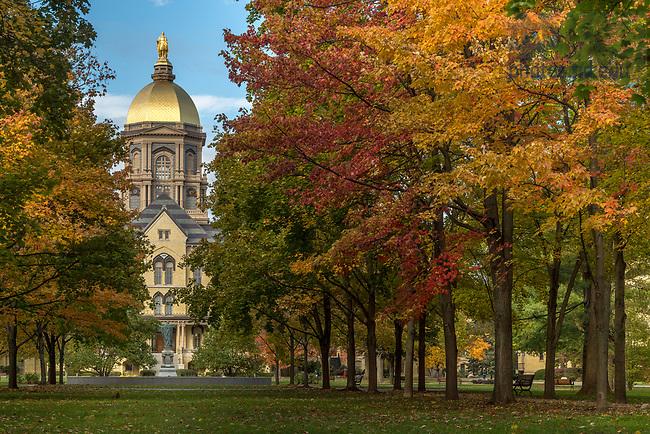November 7, 2017; Main Quad fall 2017 (Photo by Matt Cashore/University of Notre Dame)