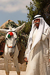 Israel, Jerusalem, An Arab man and a donkey on the Mount of Olives<br />