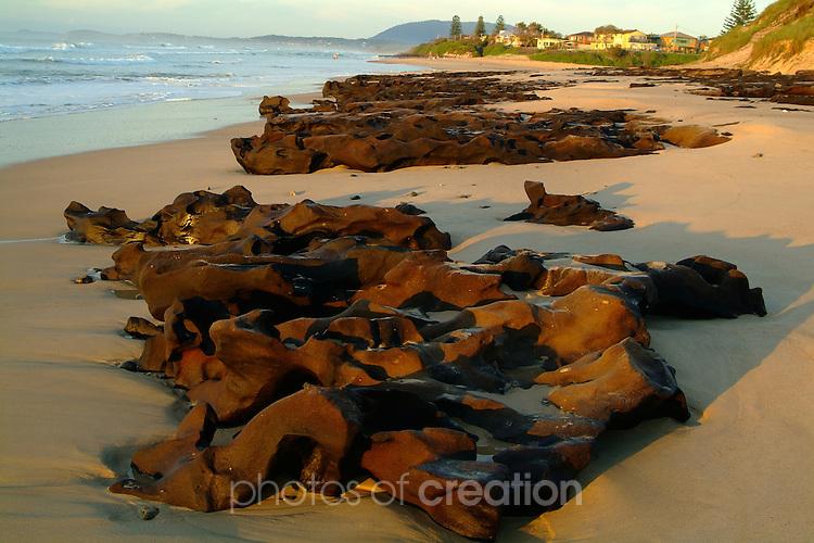 Coffee Rocks, Lighthouse Beach, Lake Cathie NSW