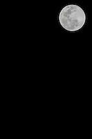 SAO PAULO, SP, 10.08.2014 - LUA CHEIA  - Lua cheia é vista a partir do bairro  do Morumbi regiao sul de Sao Paulo neste domingo, 10. (Foto: William Volcov / Brazil Photo Press).
