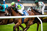 NEW YORK, NY - MAY 13: #3 ridden by Julien Leparoux and trained by Arnaud Delacour wins the Beaugay Stakes, at Belmont Park on May 13, 2017 in Elmont, New York. (Photo by Dan Hearyi/Eclipse Sportswire/Getty Images)