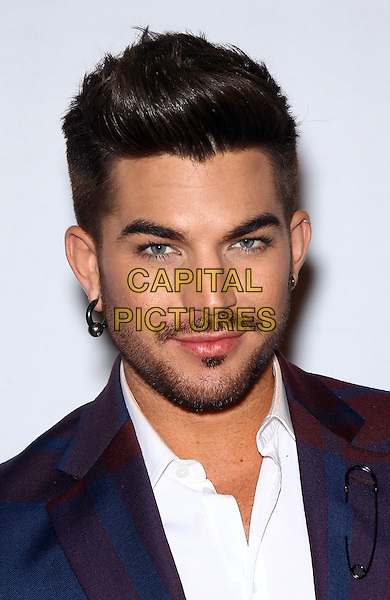 27 December 2013 - Las Vegas, Nevada - Adam Lambert.  Red Carpet for Grand Opening of &ldquo;Britney: Piece of Me&rdquo; at Planet Hollywood Resort &amp; Casino.<br /> CAP/ADM/MJT<br /> &copy; MJT/AdMedia/Capital Pictures
