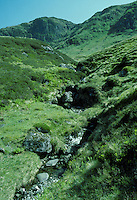 Mountain Stream, Ben Lawers, Scotland, UK