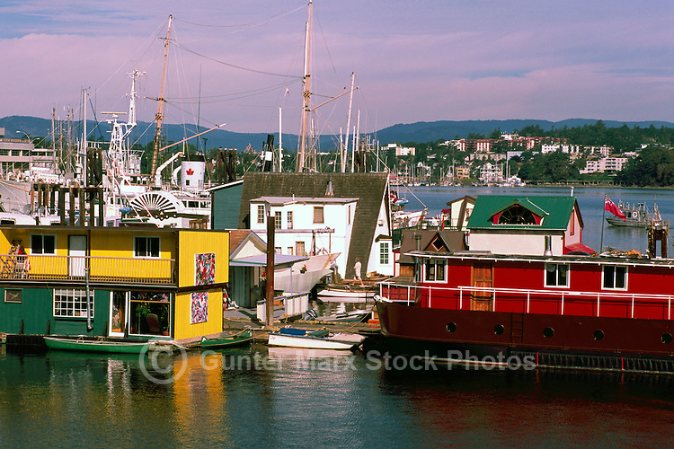 "Floating Houses in a Floating Home Community at ""Fisherman's Wharf"" in Victoria Harbour, Victoria, British Columbia, Canada, in Summer"