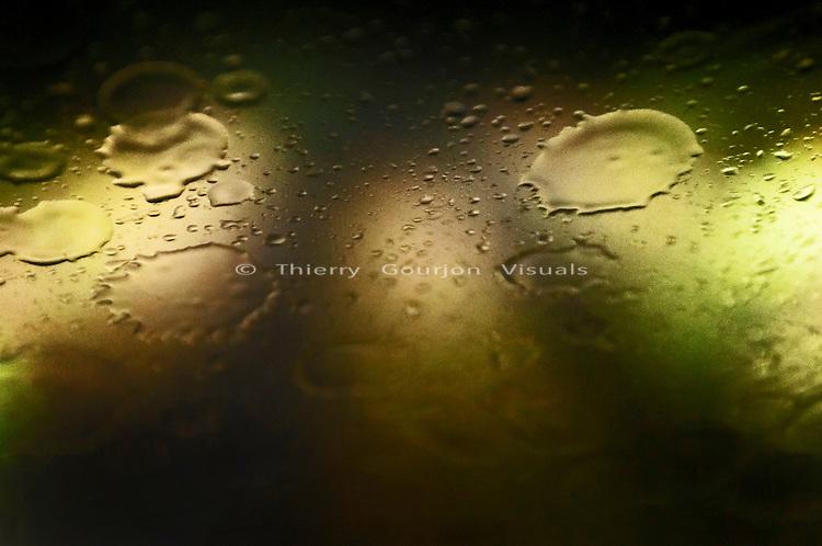 The Road To Rain, 08.22.09