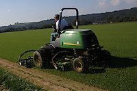 Coltivazione di prato per impianti sportivi. Cultivation of green for sports facilities....