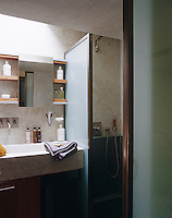 The contemporary bathroom includes a double basin and a modest shower