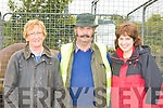 LOCALS: Joan O'Riordan, Johnny Cronin and Francis Brown enjoying the Killorglin Pony Show on Sunday.