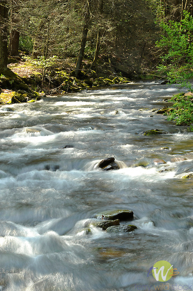 Rauchtown creek in Spring, Ravensburg State Park, Clinton County, PA
