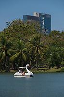 Swan pedal boat in Bangkok Lumpini park, Thailand