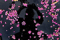 Self portrait with fallen Crepe Myrtle tree petals in my apartment's parking lot in Houston, Texas in 2013.