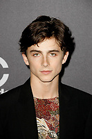 BEVERLY HILLS, CA - NOVEMBER 04: Timothee Chalamet attends the 22nd Annual Hollywood Film Awards at The Beverly Hilton Hotel on November 4, 2018 in Beverly Hills, California. <br /> CAP/MPI/SPA<br /> &copy;SPA/MPI/Capital Pictures