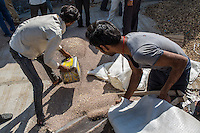Farmers bring their harvests of guar into an auction centre in Bikaner, Rajasthan, India on October 24th, 2016. Non-profit organisation Technoserve works with farmers in Bikaner, providing technical support and training, causing increased yield from implementation of good agricultural practices as well as a switch to using better grains better suited to the given climate. Photograph by Suzanne Lee for Technoserve