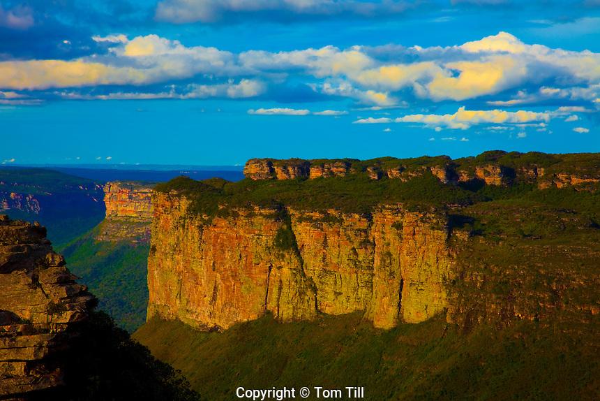 Cliffs of Diamantina   Diamantina National Park, Brazil  Bahia Region Sandstone mesas and buttes near Lencois     Rock forms covered by rainforest   Rainwaterpockets on mesa top Sandstone mesas and buttes near Lencois     Rock formed covered by rainforest