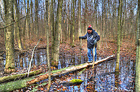 Dan McCaffery walking the plank at Bickford Oak Woods, Bickford Line and Highway 40 an Bickford Line 40 Kilometres south of Sarnia, Ontario.