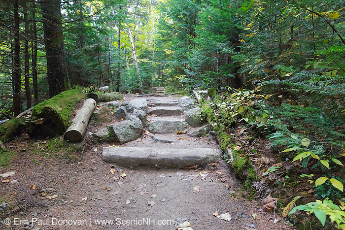 Natural looking stone steps along Zealand Trail in Bethlehem, New Hampshire USA during the autumn months.