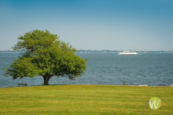 Harkness Memorial State Park. Long Island Sound, tree, and Ferry.