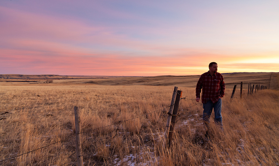 A man in his thirties looks out over a pasture in Cascade County, Montana, near Simms as the sun rises with pink and orange hues.