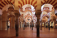 The hypostyle prayer hall, area built in the 10th century under Al-Mansur, 987-988, in the Cathedral-Great Mosque of Cordoba, in Cordoba, Andalusia, Southern Spain. The hall is filled with rows of columns topped with double arches, a horseshoe arch below a Roman arch, in stripes of red brick and white stone. The first church built here by the Visigoths in the 7th century was split in half by the Moors, becoming half church, half mosque. In 784, the Great Mosque of Cordoba was begun in its place and developed over 200 years, but in 1236 it was converted into a catholic church, with a Renaissance cathedral nave built in the 16th century. The historic centre of Cordoba is listed as a UNESCO World Heritage Site. Picture by Manuel Cohen
