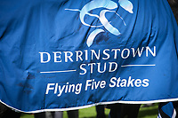 THE CURRAGH, CO. KILDARE - SEPTEMBER 10: Caravaggio #6, ridden by Ryan Moore, wins the Derrinstown Stud Flying Five S., Win and You're In for the Breeders' Cup Turf Sprint, at The Curragh in Co. Kildare, Ireland. (Photo by Sophie Shore/Eclipse Sportswire/Getty Images)