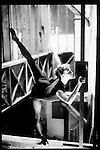 LA MATIERE DE LA DANSEUSE<br /> Ville : Paris<br /> 1998<br /> © Laurent Paillier / photosdedanse.com<br /> All rights reserved