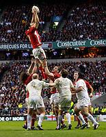 Photo: Richard Lane/Richard Lane Photography. England v Wales. 25/02/2012. Wales' Sam Warburton wins a lineout.