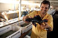 """Haroldo Martins 40 anos trabalha com exportaÁ""""o de peixes ornamentais a 22 anos para os mercados da ¡sia, China e Europa e chega a mandar para fora do paÌs mais de 25.000 mil espÈcimes por mÍs, mostra um peixe conhecido como AÁac˙, um importante espÈcime da regi""""o.Altamira, Par·, Brasil.10/02/2006Foto Paulo Santos/Interfoto"""