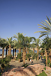 Israel, The Red Sea. Dan hotel in Eilat