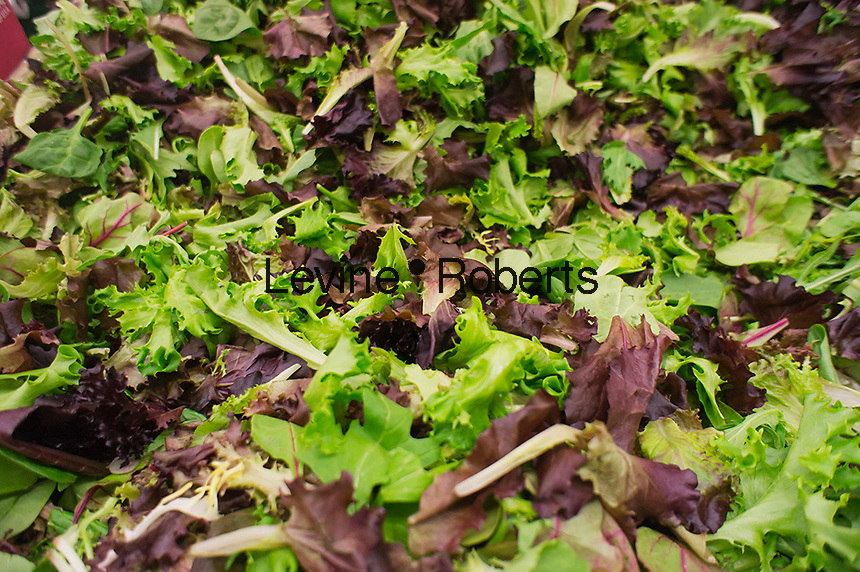Locally grown mixed greens are seen in a grocery store in New York on Friday, September 14, 2012. (© Richard B. Levine)