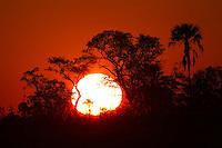 Red sunset in the Okavango Delta