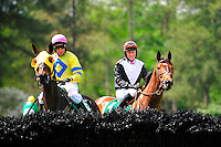 24  March, 2012:  Richard Boucher and FLIGHT MOVIE (left) look at the first before the Celebrate Aiken Allowance Hurdle.