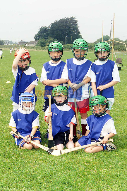 Clare. Back Row L/R, David Stephenson, Cormac McCabe, Ciaran Hoey and Lisa Monahan. Front Row L/R, James Griffen, Tadhg O'Brien and Brian McGlew..Picture Paul Mohan Newsfile.