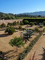 Weingut la Chiusa, Magazzini, Elba, Region Toskana, Provinz Livorno, Italien, Europa
