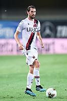 Andre Poli <br /> Verona 25/08/2019 Stadio Bentegodi <br /> Football Serie A 2019/2020 <br /> Hellas Verona - Bologna FC  <br /> Photo Daniele Buffa / Image Sport / Insidefoto