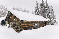 Log cabin, Wiseman, Alaska
