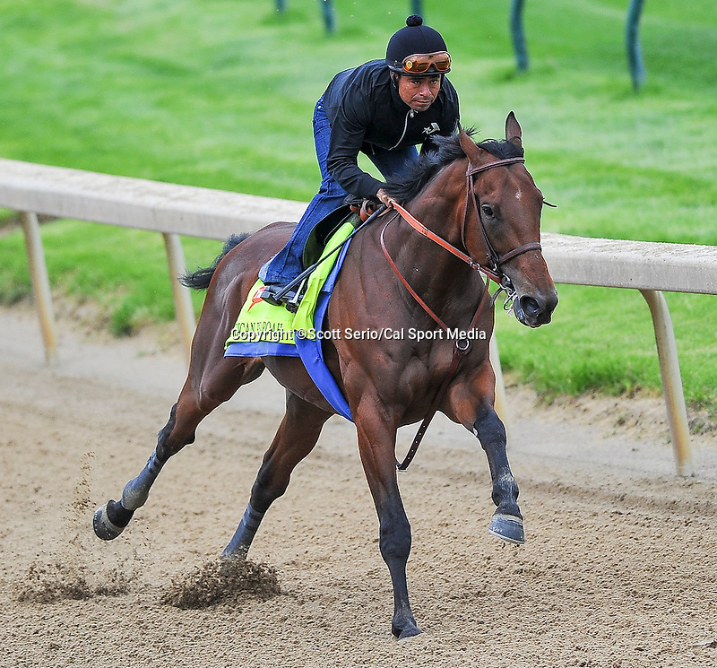 April 26, 2015: American Pharoah, trained by Bob Baffert exercises in preparation for the 141st Kentucky Derby at Churchill Downs in Louisville, Kentucky. Scott Serio/CSM