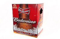 A six pack of Budweiser beer bottles over a white background