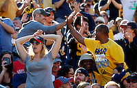 An Ohio State fan reacts to a California touchdown during the first quarter of the NCAA football game at Memorial Stadium in Berkeley, California on Sept. 14, 2013. (Adam Cairns / The Columbus Dispatch)