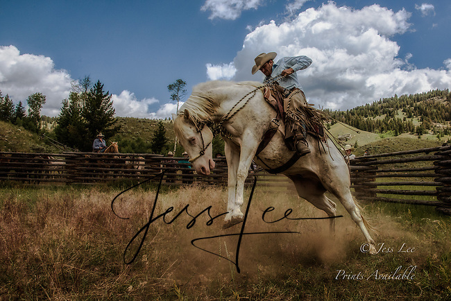 Cowboy and Cowgirl photographs of western ranches working with horses and cattle by western cowboy photographer Jess Lee. Photographing ranches big and small in Wyoming,Montana,Idaho,Oregon,Colorado,Nevada,Arizona,Utah,New Mexico.