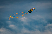 From the movies, a Minion kite, mostly yellow and blue, flies against a blue sky with white clouds.