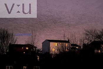 Flock of Starlings over a neighborhood at dawn. ,Sturnus vulgaris,