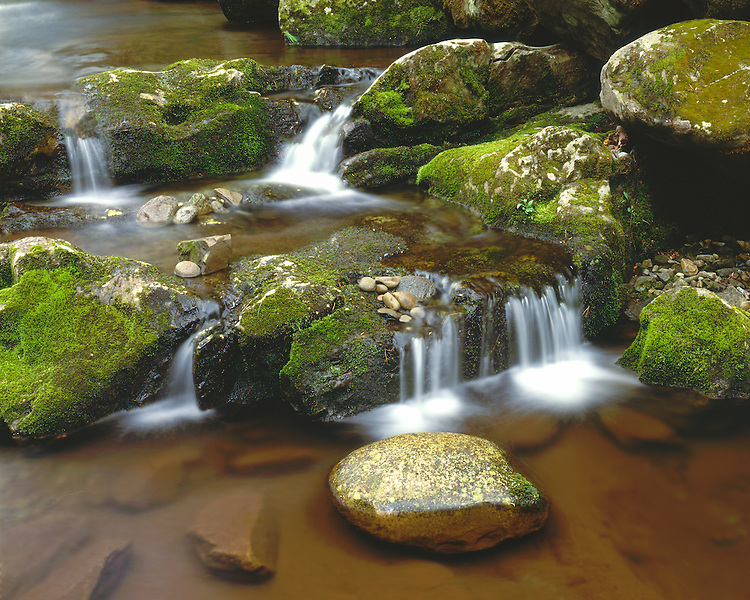 Summer scene along the Middle Prong of the Little River; Great Smoky Mountains National Park, TN